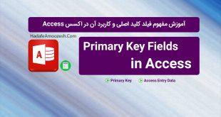 Access_Primary Key
